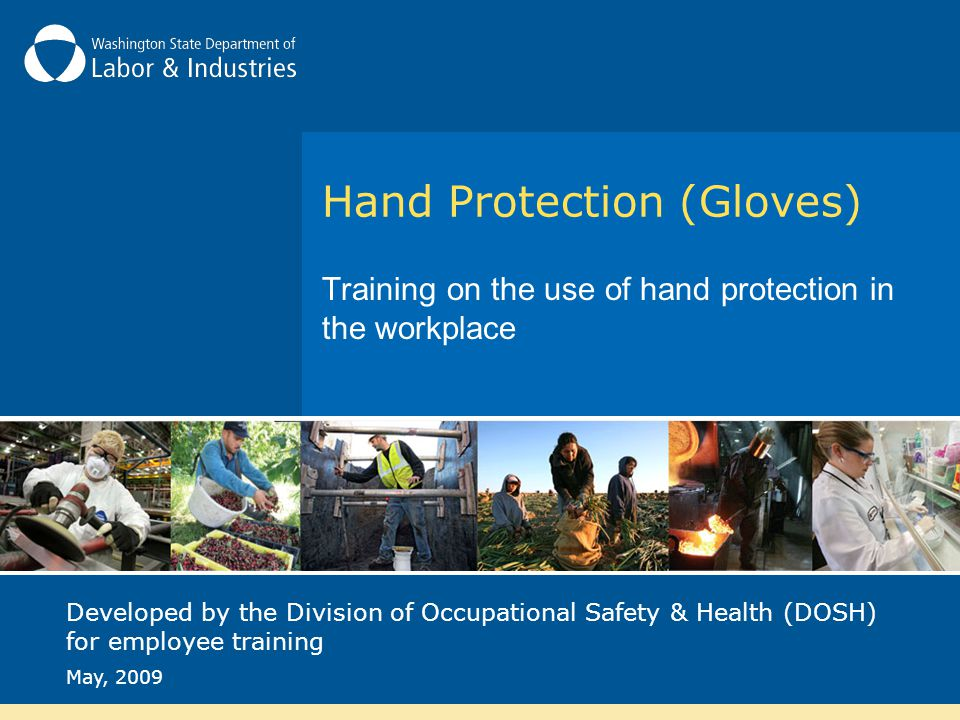 Hand Protection (Gloves) Training on the use of hand protection in the workplace Developed by the Division of Occupational Safety & Health (DOSH) for