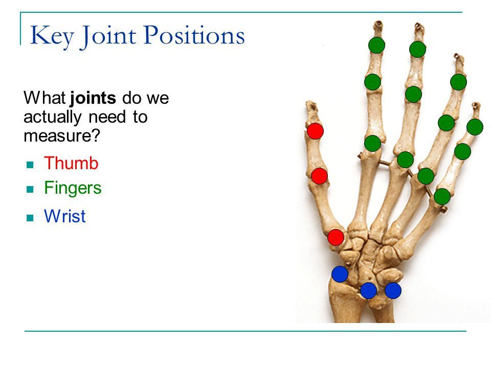 Key Joint Positions What joints do we actually need to measure Thumb Fingers Wrist