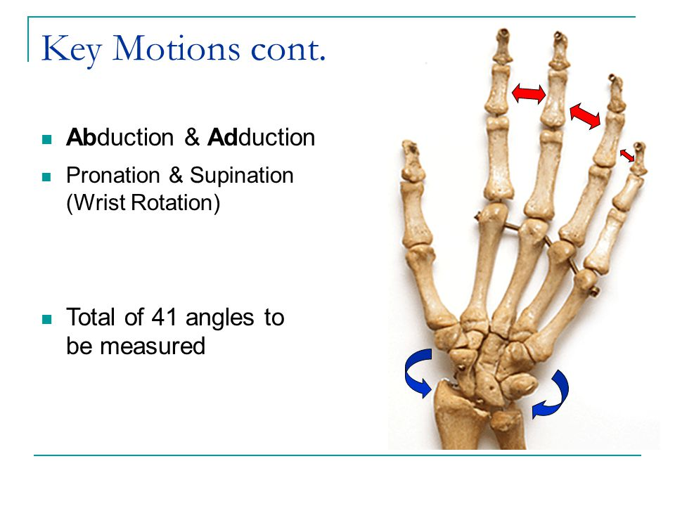Key Motions cont. Abduction & Adduction Pronation & Supination (Wrist Rotation) Total of 41 angles to be measured