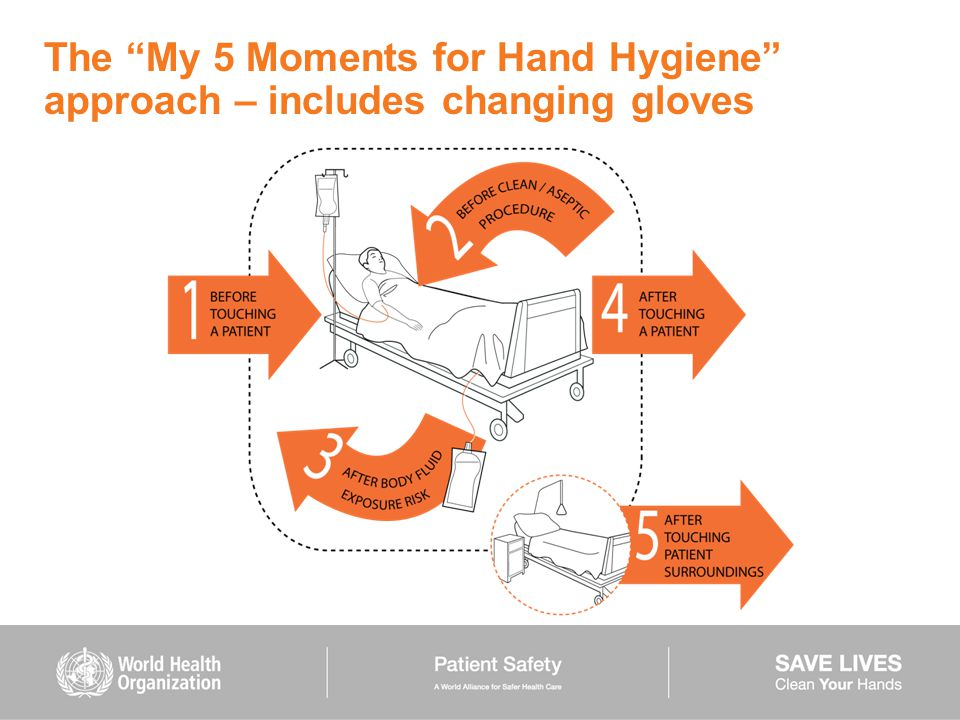 The My 5 Moments for Hand Hygiene approach – includes changing gloves