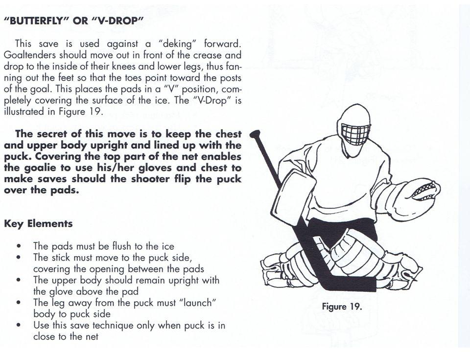 The Wockey Goalie Drill Book © CC wockey 19