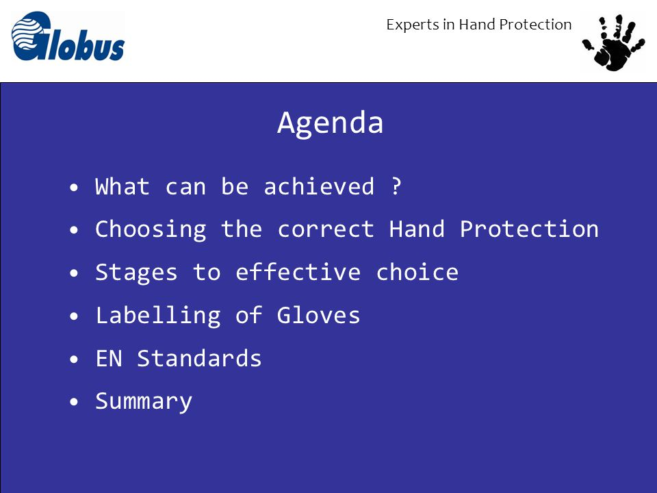 Experts in Hand Protection What can be achieved ? Choosing the correct Hand Protection Stages to effective choice Labelling of Gloves EN Standards Sum