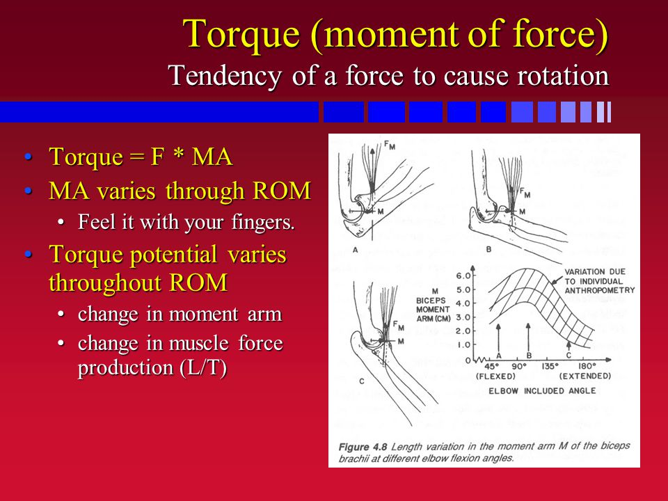 Torque (moment of force) Tendency of a force to cause rotation Torque = F * MATorque = F * MA MA varies through ROMMA varies through ROM Feel it with your fingers.Feel it with your fingers.