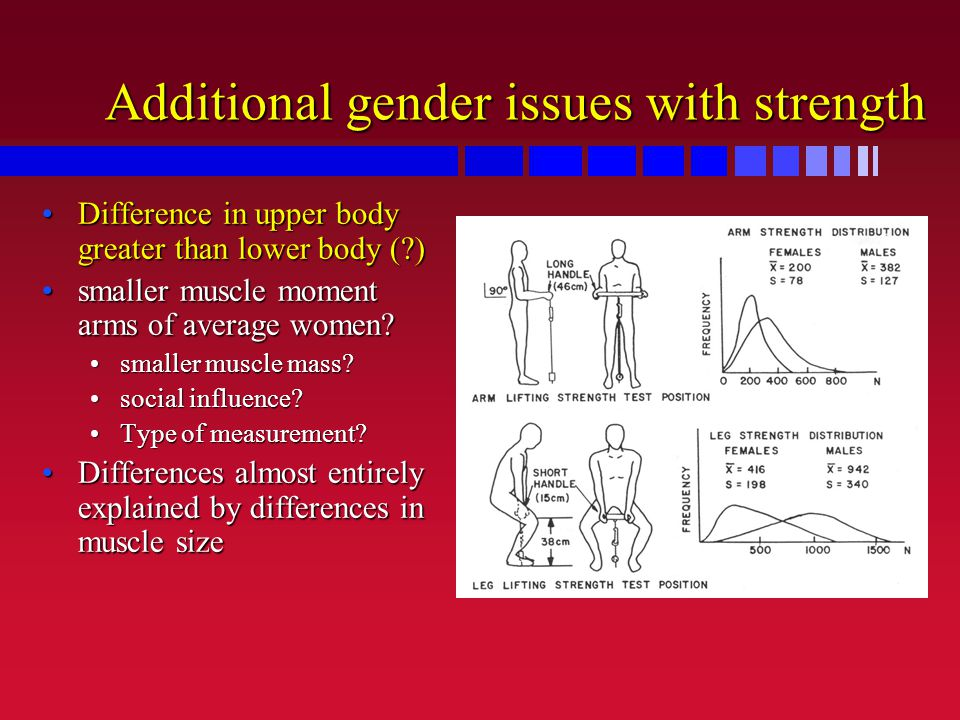 Additional gender issues with strength Difference in upper body greater than lower body ( )Difference in upper body greater than lower body ( ) smaller muscle moment arms of average women smaller muscle moment arms of average women.