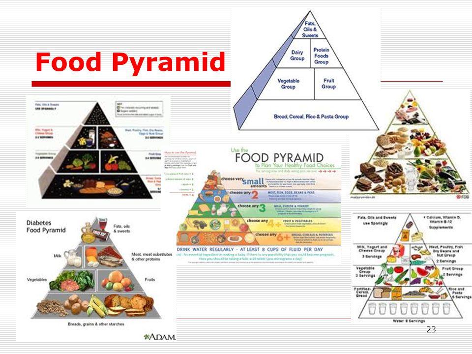 Food Pyramid 23