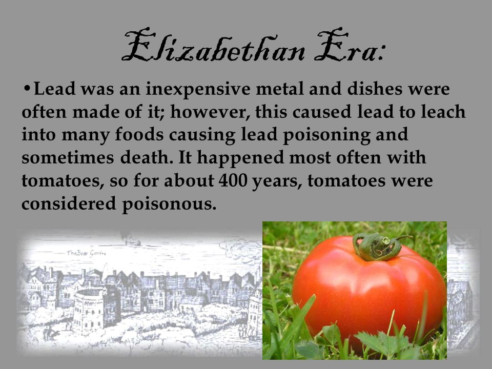 Elizabethan Era: Lead was an inexpensive metal and dishes were often made of it; however, this caused lead to leach into many foods causing lead poiso