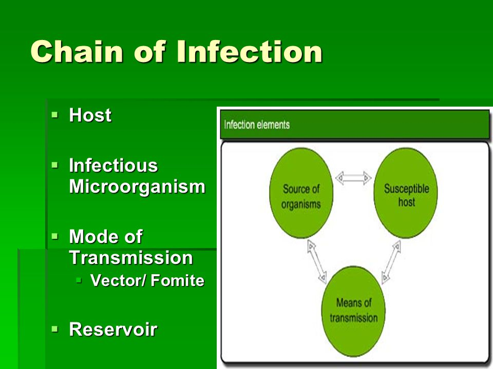 Chain of Infection  Host  Infectious Microorganism  Mode of Transmission  Vector/ Fomite  Reservoir