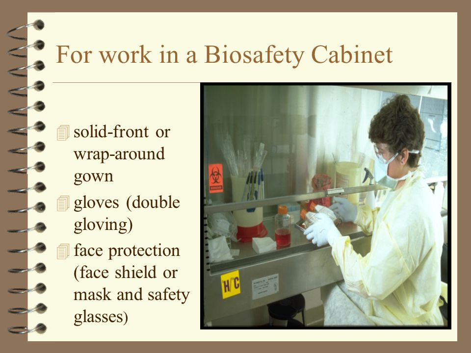 For work in a Biosafety Cabinet 4 solid-front or wrap-around gown 4 gloves (double gloving) 4 face protection (face shield or mask and safety glasses )
