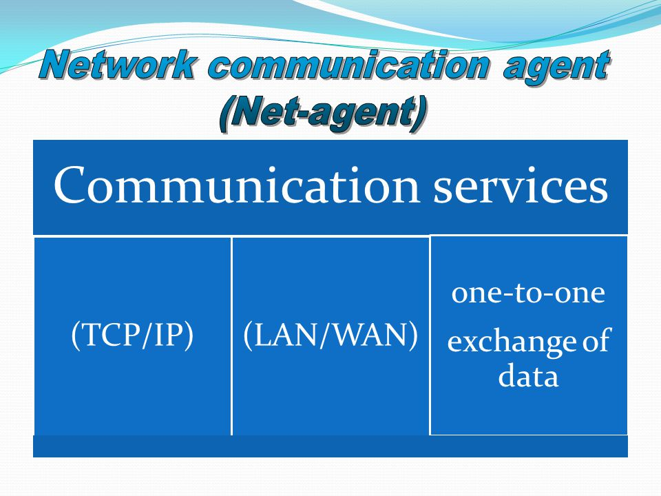 Communication services (TCP/IP)(LAN/WAN) one-to-one exchange of data