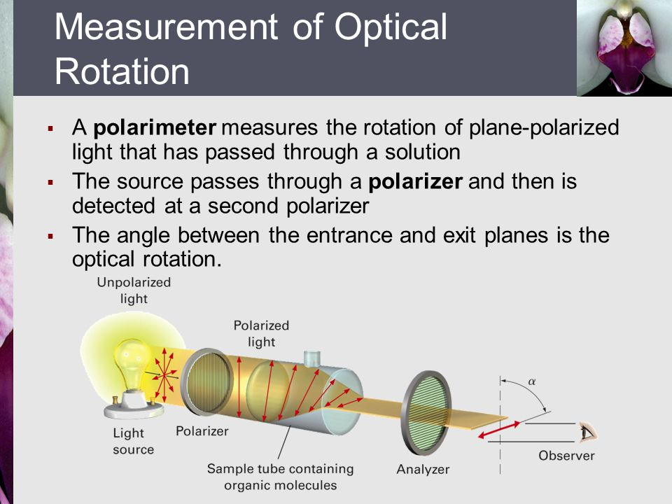  A polarimeter measures the rotation of plane-polarized light that has passed through a solution  The source passes through a polarizer and then is detected at a second polarizer  The angle between the entrance and exit planes is the optical rotation.