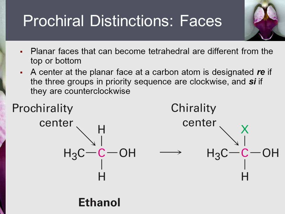  Planar faces that can become tetrahedral are different from the top or bottom  A center at the planar face at a carbon atom is designated re if the three groups in priority sequence are clockwise, and si if they are counterclockwise Prochiral Distinctions: Faces