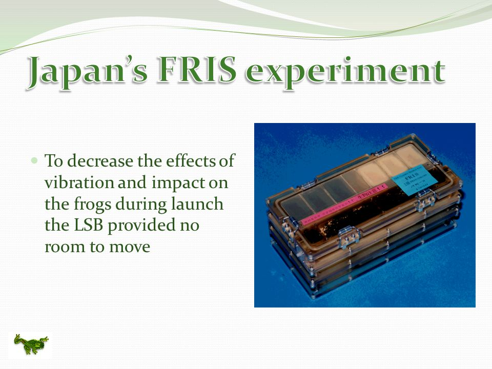 To decrease the effects of vibration and impact on the frogs during launch the LSB provided no room to move