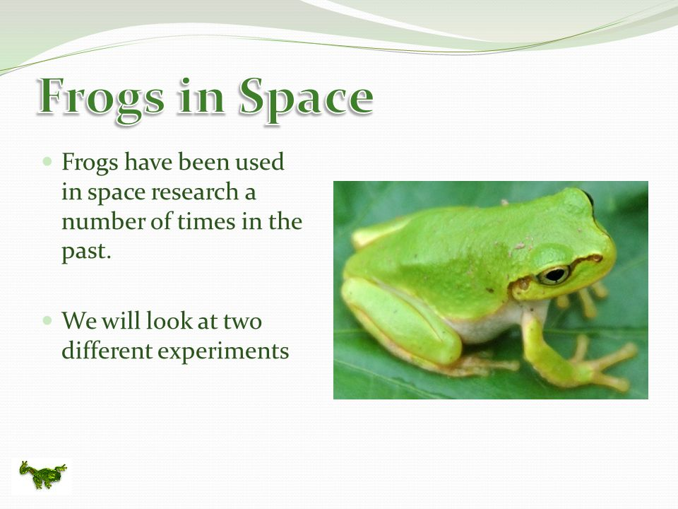 Frogs have been used in space research a number of times in the past.