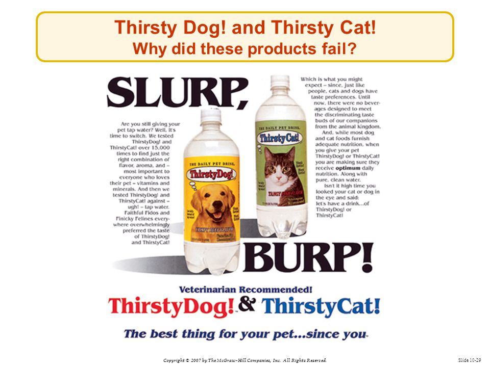 Copyright © 2007 by The McGraw-Hill Companies, Inc. All Rights Reserved. Slide 10-29 Thirsty Dog! and Thirsty Cat! Why did these products fail?