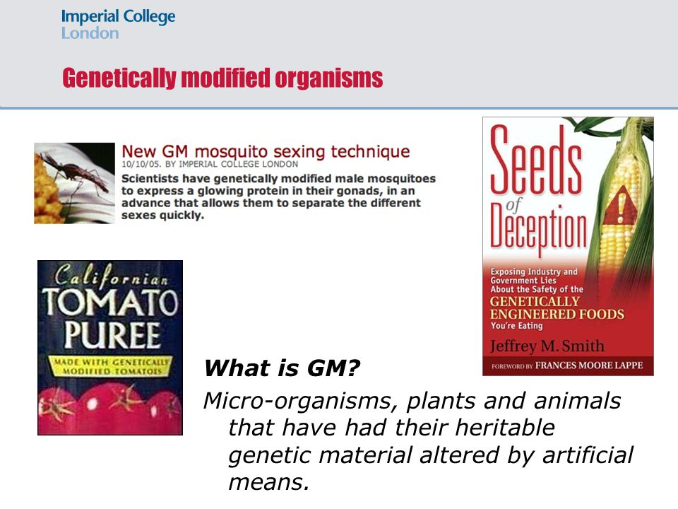 Genetically modified organisms What is GM.