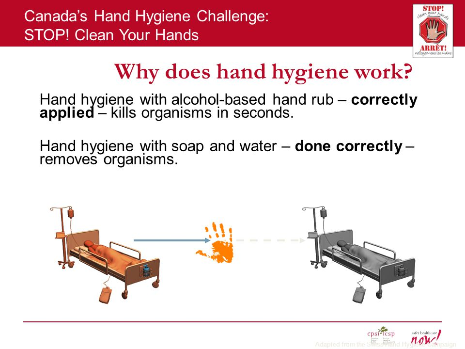 Canada's Hand Hygiene Challenge: STOP.Clean Your Hands Why does hand hygiene work.