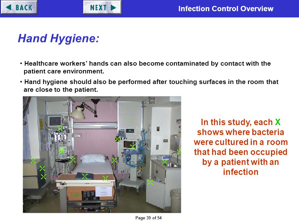Infection Control Overview Page 39 of 54 Hand Hygiene: Healthcare workers' hands can also become contaminated by contact with the patient care environ