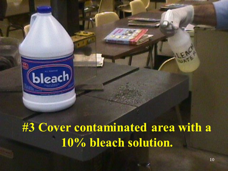 10 #3 Cover contaminated area with a 10% bleach solution.