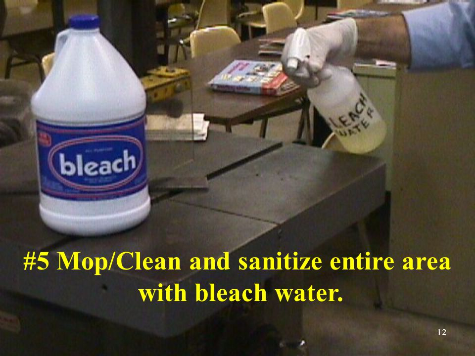12 #5 Mop/Clean and sanitize entire area with bleach water.