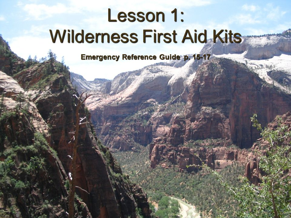 Wilderness and Remote First Aid Kits Wilderness and Remote First Aid Kits Objectives: –Describe the contents of a Wilderness/Remote 1 st Aid Kit –Determine how to modify a kit for group size –Describe ways to improvise missing/needed items