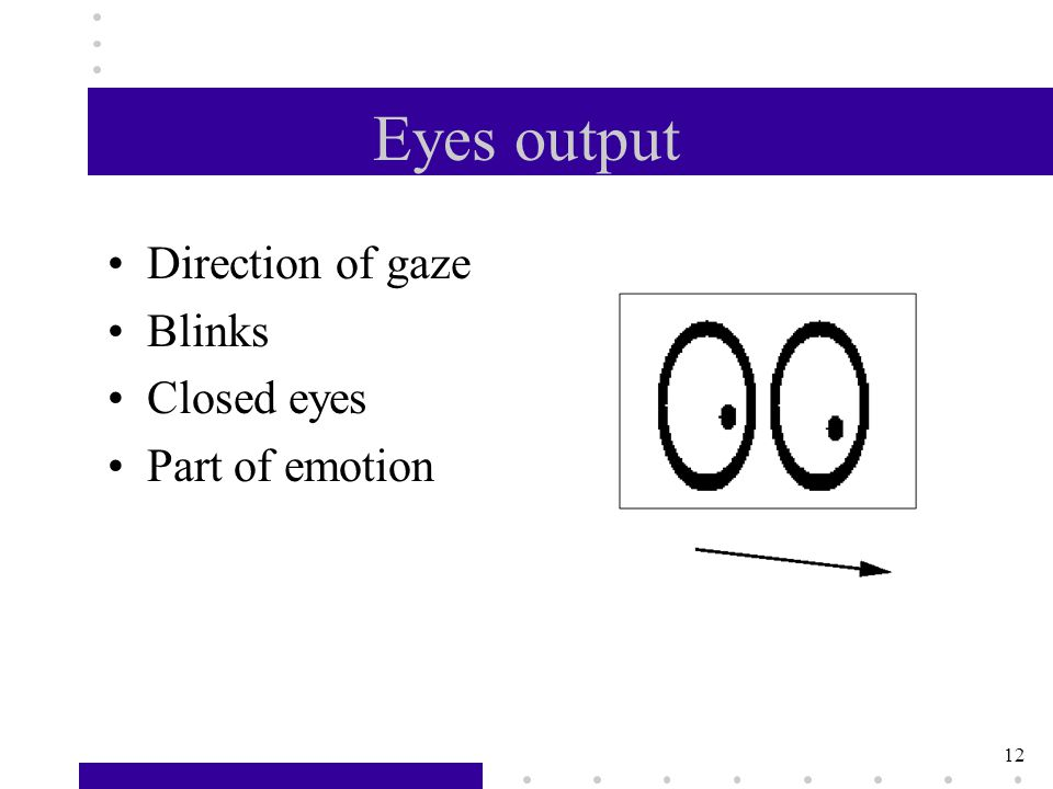 12 Eyes output Direction of gaze Blinks Closed eyes Part of emotion