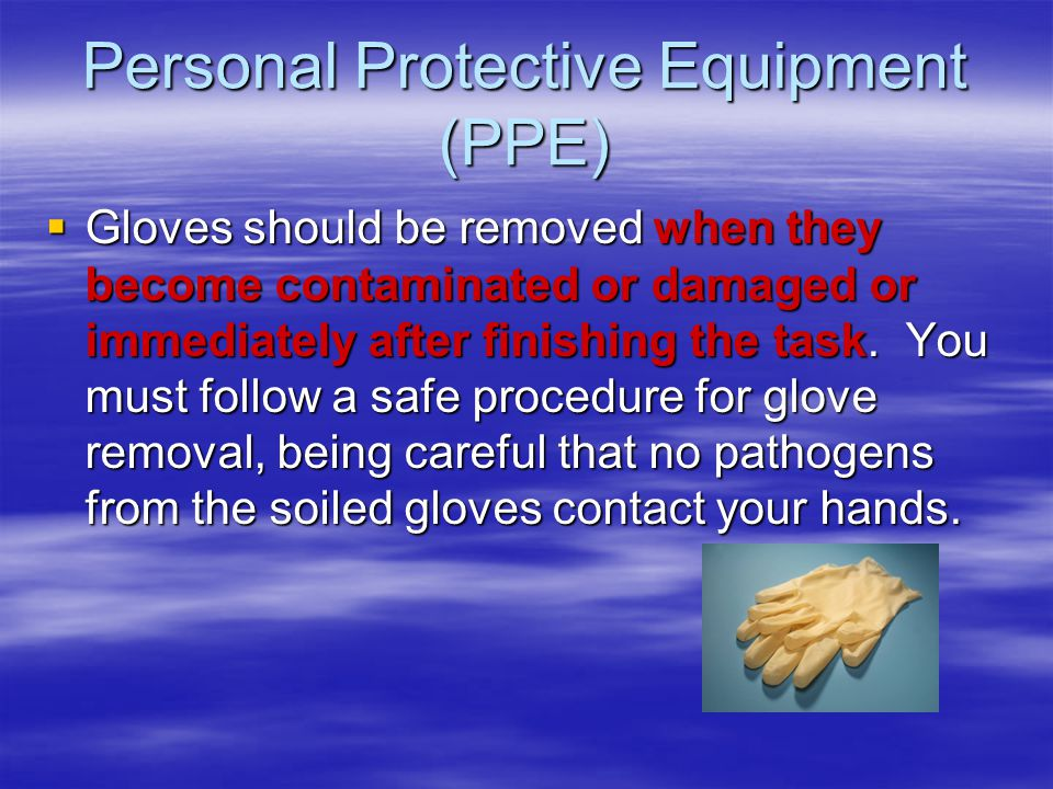 Personal Protective Equipment (PPE)  Gloves should be removed when they become contaminated or damaged or immediately after finishing the task.