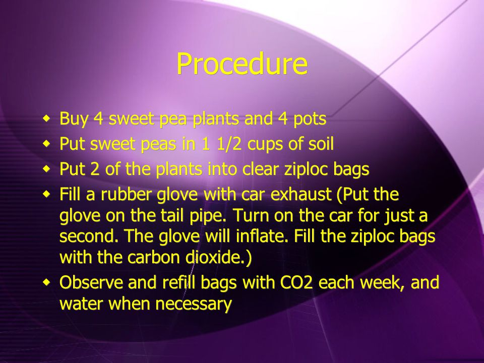 Procedure  Buy 4 sweet pea plants and 4 pots  Put sweet peas in 1 1/2 cups of soil  Put 2 of the plants into clear ziploc bags  Fill a rubber glove with car exhaust (Put the glove on the tail pipe.
