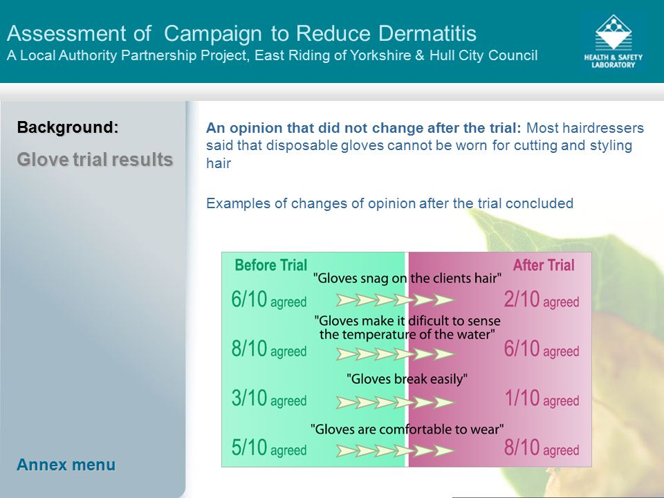 Assessment of Campaign to Reduce Dermatitis A Local Authority Partnership Project, East Riding of Yorkshire & Hull City CouncilBackground: Glove trial results An opinion that did not change after the trial: Most hairdressers said that disposable gloves cannot be worn for cutting and styling hair Examples of changes of opinion after the trial concluded Annex menu Annex menu