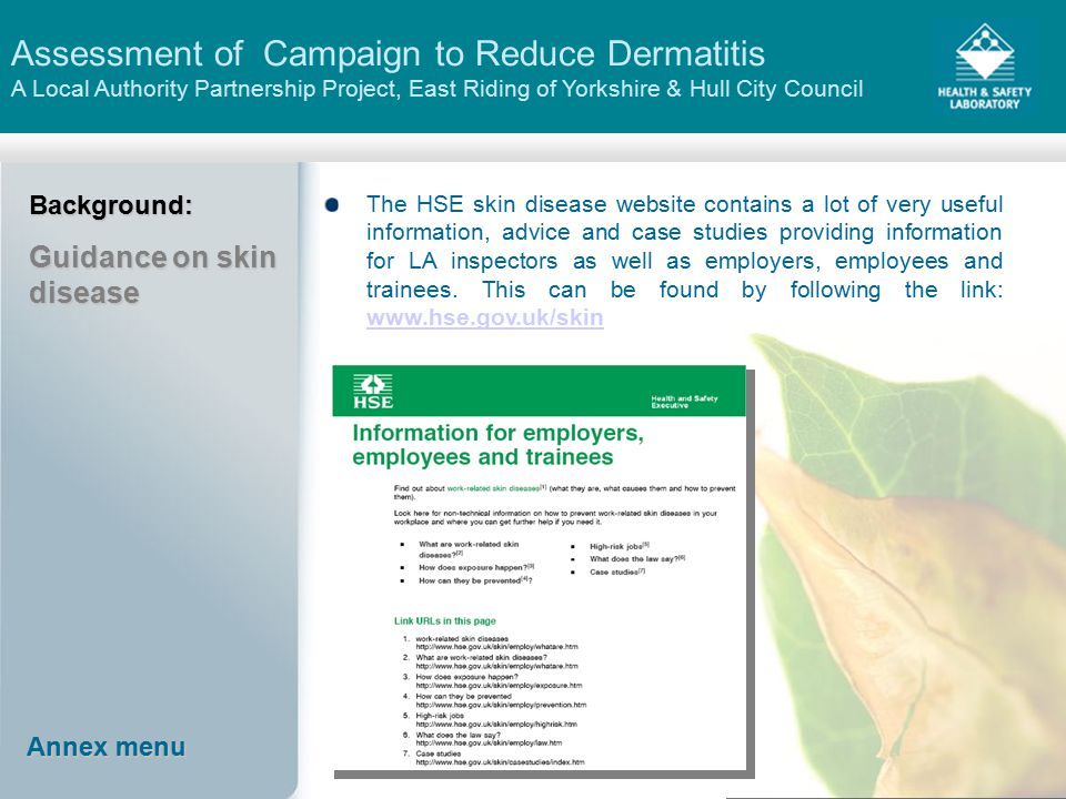 Assessment of Campaign to Reduce Dermatitis A Local Authority Partnership Project, East Riding of Yorkshire & Hull City Council Annex menu Annex menu Background: Guidance on skin disease The HSE skin disease website contains a lot of very useful information, advice and case studies providing information for LA inspectors as well as employers, employees and trainees.