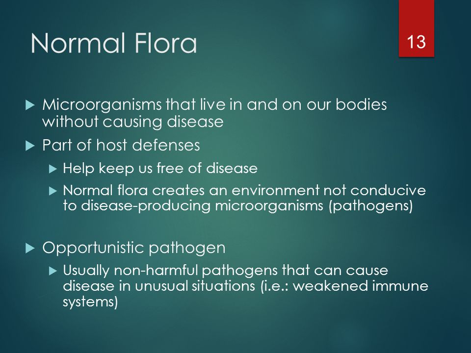 Normal Flora  Microorganisms that live in and on our bodies without causing disease  Part of host defenses  Help keep us free of disease  Normal f
