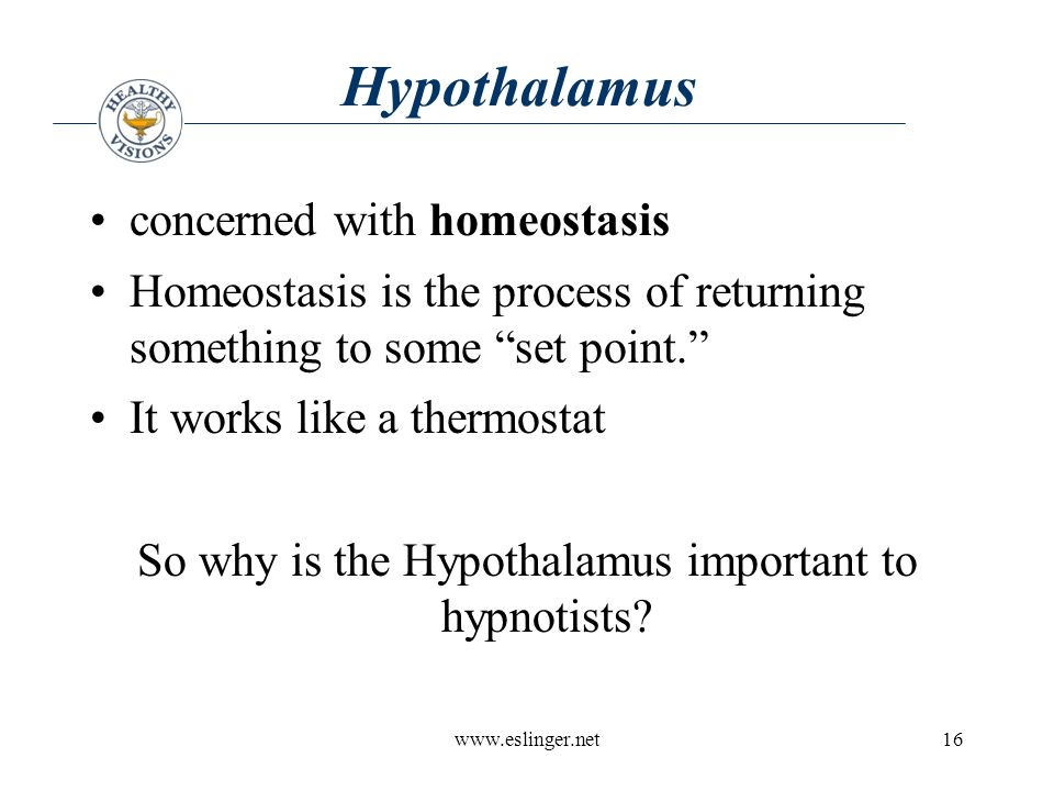 www.eslinger.net16 Hypothalamus concerned with homeostasis Homeostasis is the process of returning something to some set point. It works like a thermostat So why is the Hypothalamus important to hypnotists