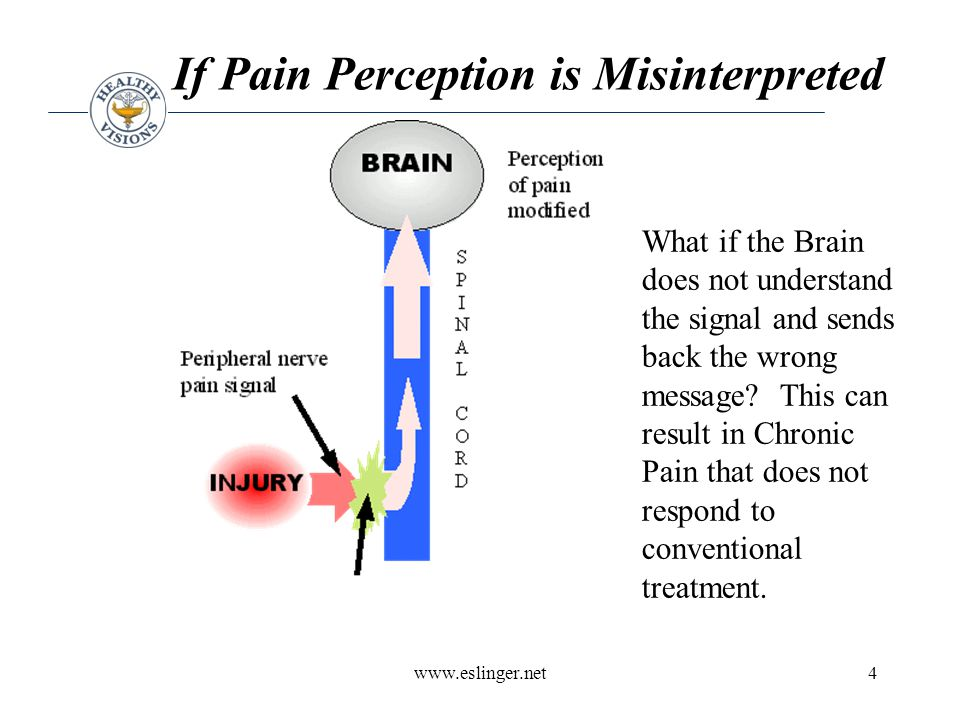 www.eslinger.net15 Procedural Memory Probably the most durable form of memory –actions, habits, or skills that are learned simply by repetition The hippocampus is critical in laying down declarative memory –is not necessary for working memory –procedural memory –memory storage