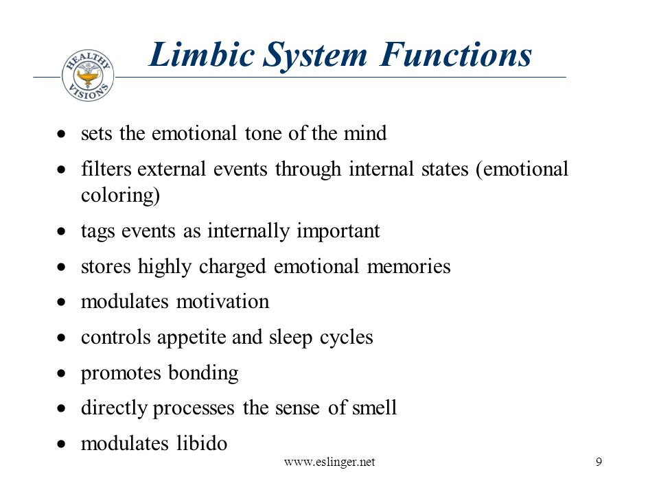 www.eslinger.net10 Limbic System Problems  moodiness, irritability, clinical depression  increased negative thinking  perceive events in a negative way  decreased motivation  flood of negative emotions  appetite and sleep problems  decreased or increased sexual responsiveness  social isolation