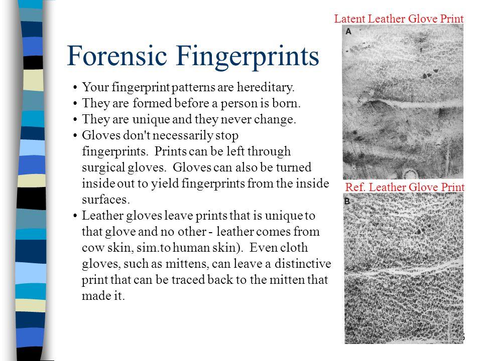 6 Fingerprint Basics A fingerprint is an individual characteristic.
