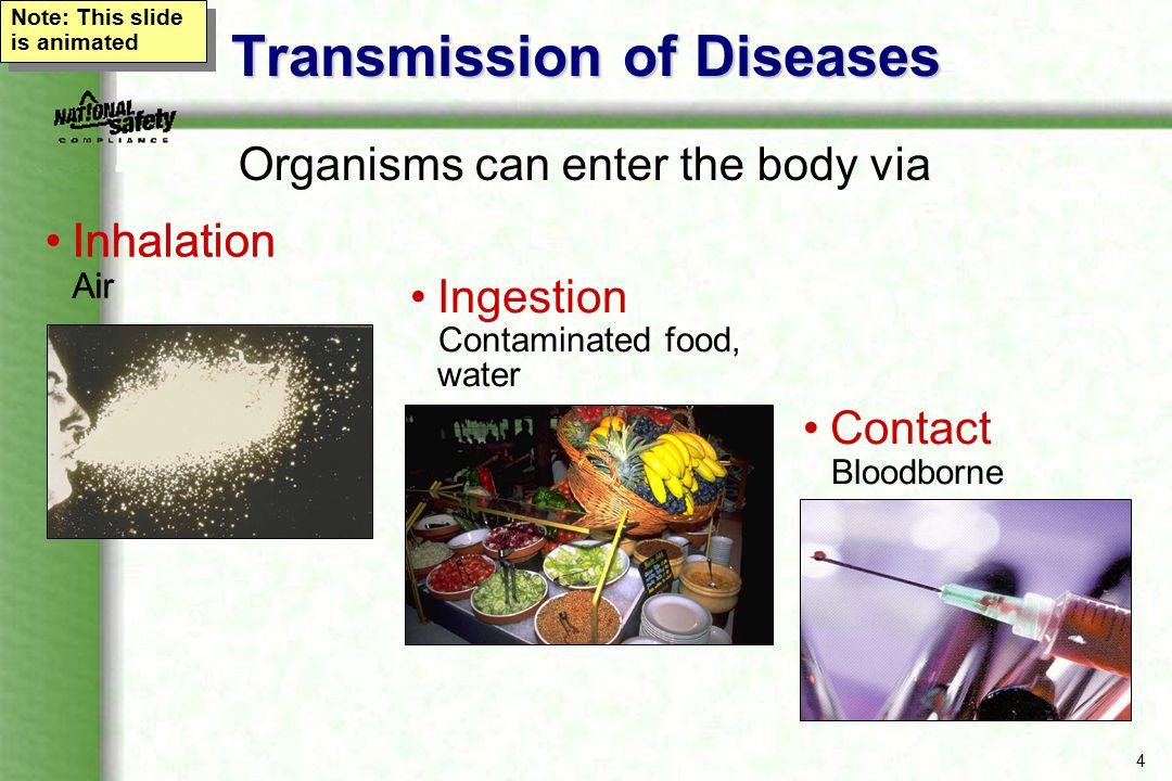 15 HCV - Hepatitis C The most common chronic bloodborne infection in the U.S.