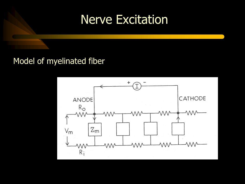 Nerve Excitation Model of myelinated fiber