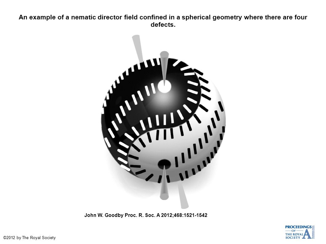 An example of a nematic director field confined in a spherical geometry where there are four defects.