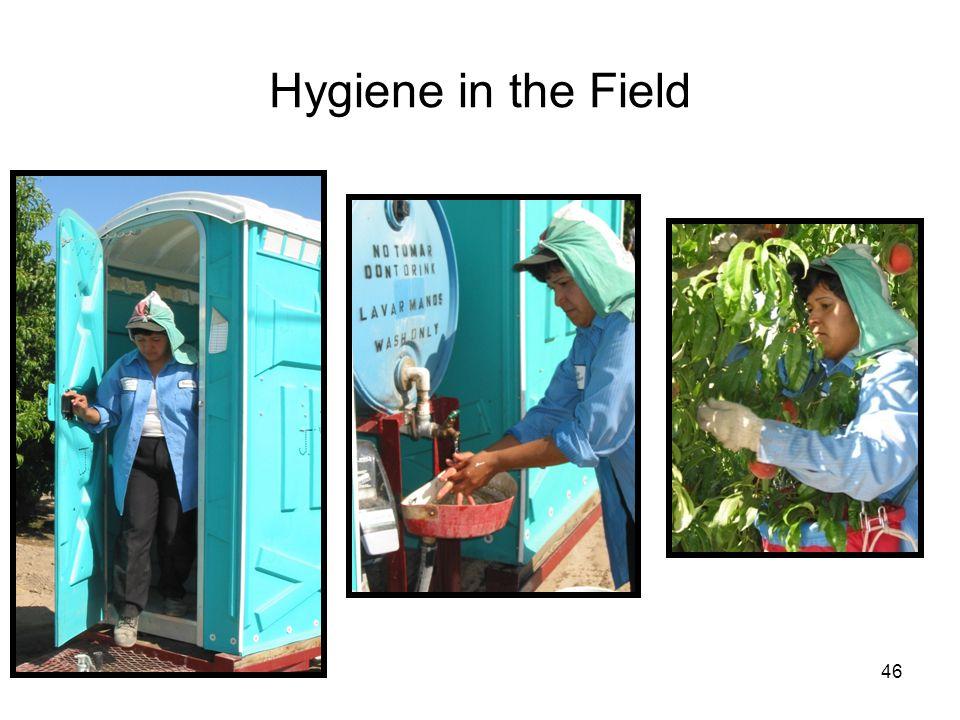 Hygiene in the Field 46