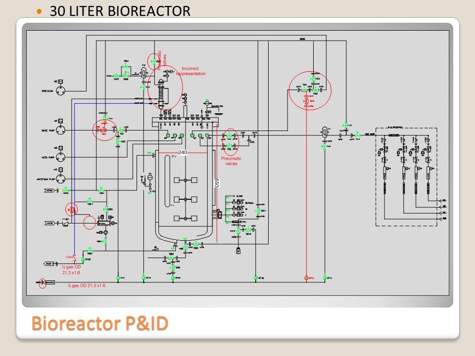 Bioreactor P&ID 30 LITER BIOREACTOR