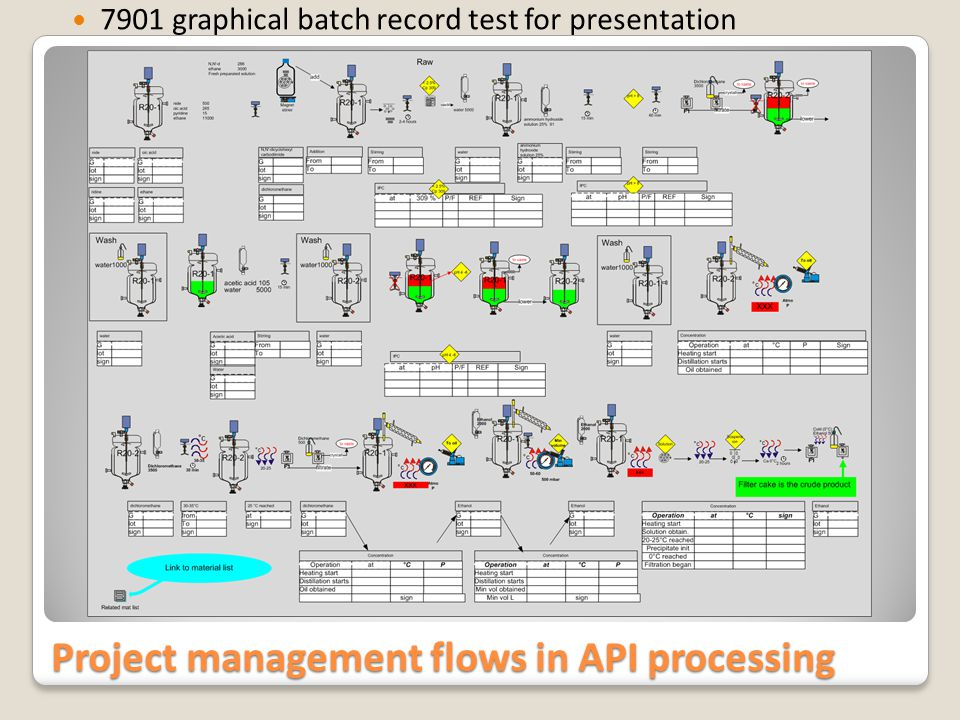 Project management flows in API processing 7901 graphical batch record test for presentation