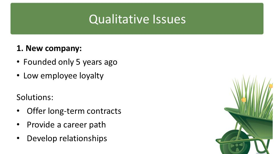 Qualitative Issues 1. New company: Founded only 5 years ago Low employee loyalty Solutions: Offer long-term contracts Provide a career path Develop re