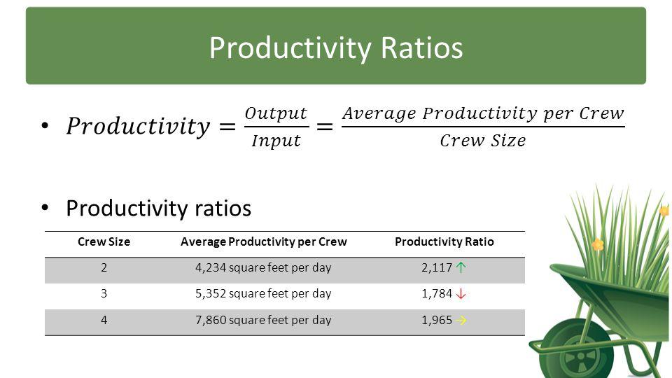 Productivity Ratios Crew SizeAverage Productivity per CrewProductivity Ratio 24,234 square feet per day2,117 ↑ 35,352 square feet per day1,784 ↓ 47,86
