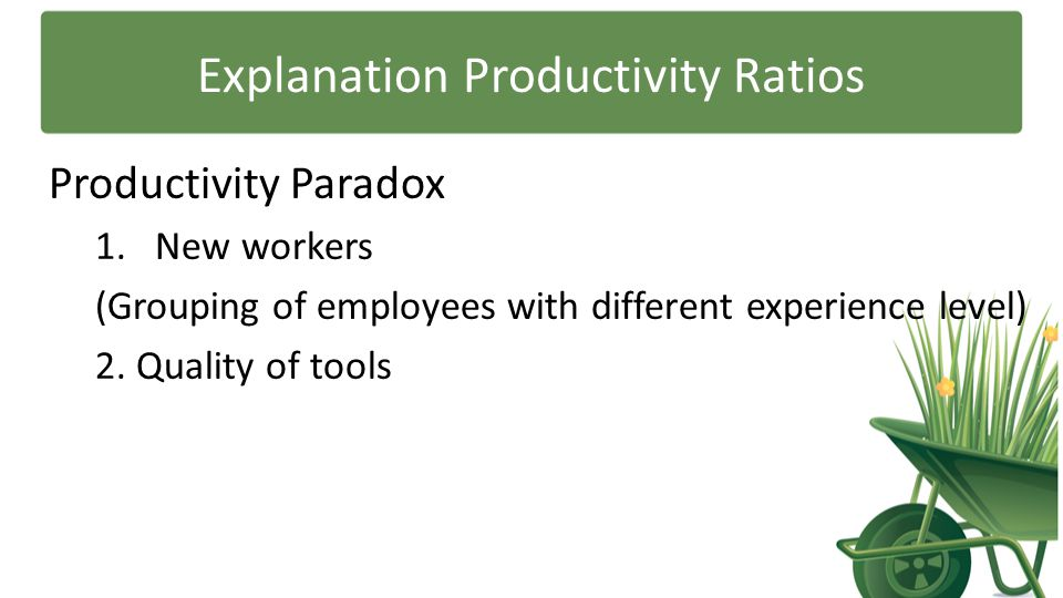 Explanation Productivity Ratios Productivity Paradox 1.New workers (Grouping of employees with different experience level) 2. Quality of tools
