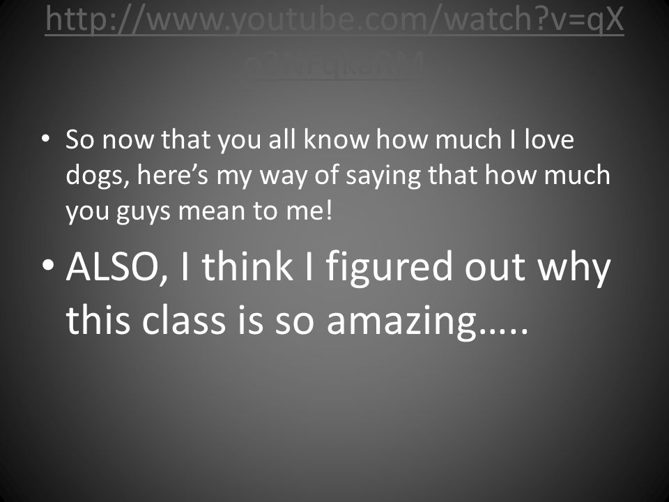 http://www.youtube.com/watch?v=qX o3NFqkaRM So now that you all know how much I love dogs, here's my way of saying that how much you guys mean to me!