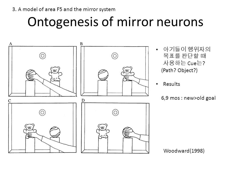 Ontogenesis of mirror neurons 아기들이 행위자의 목표를 판단할 때 사용하는 Cue 는 .