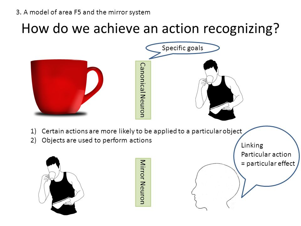 1)Certain actions are more likely to be applied to a particular object 2)Objects are used to perform actions How do we achieve an action recognizing.