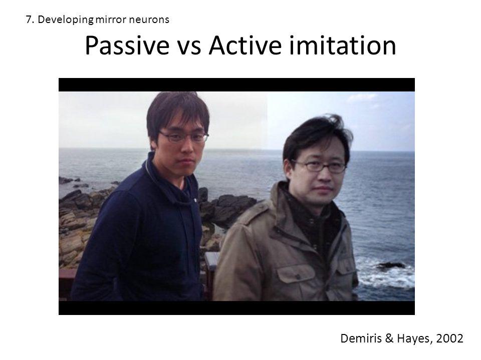 Passive vs Active imitation Demiris & Hayes, 2002 7. Developing mirror neurons