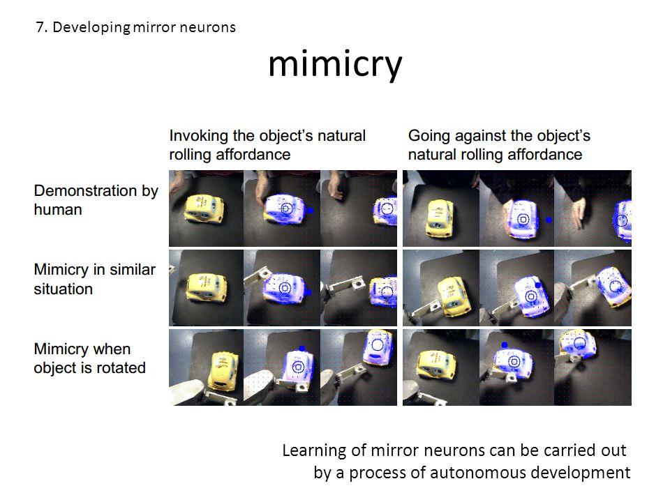 mimicry 7.