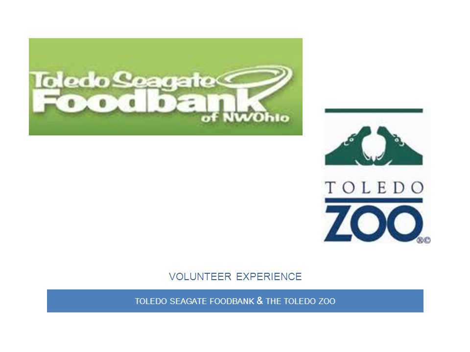TOLEDO SEAGATE FOODBANK & THE TOLEDO ZOO VOLUNTEER EXPERIENCE