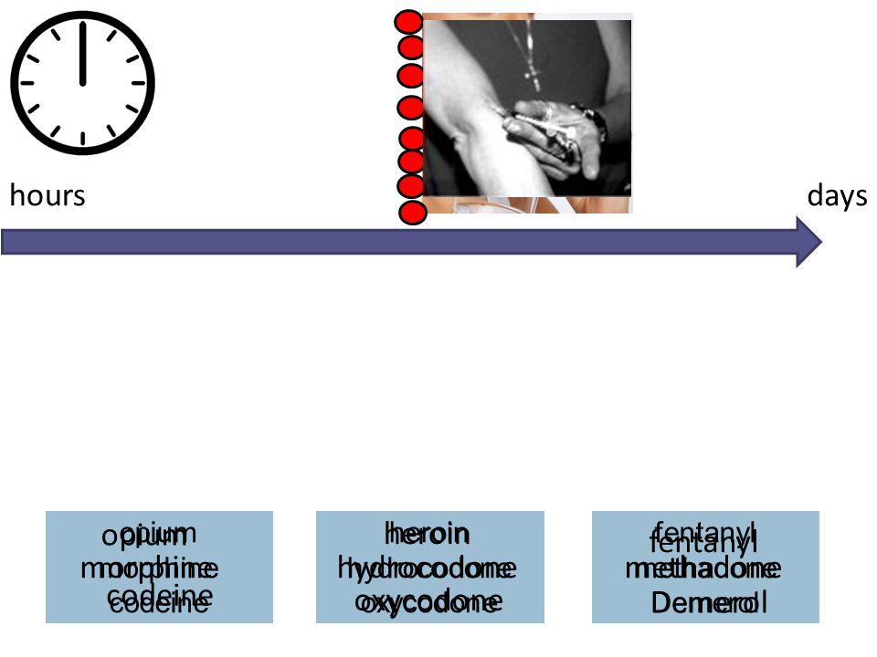 opium morphine codeine heroin hydrocodone oxycodone fentanyl methadone Demerol opium morphine codeine hydrocodone oxycodone heroin Demerol methadone f